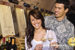 SALON VÍN České republiky/The Wine Salon of the Czech Republic